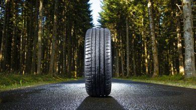 Photo of Michelin ќе користи дрва во своите гуми